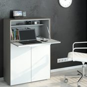 Modell 2016 Schreibtisch Sekretär Barschrank MAJA
